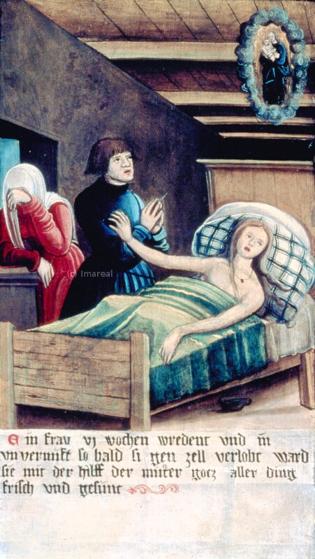 Heilung einer irren Frau von Meister der Brucker Martinstafel