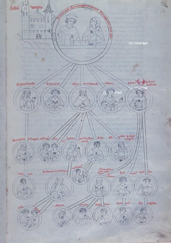 Stammbaum der Kuenringer-Weitra