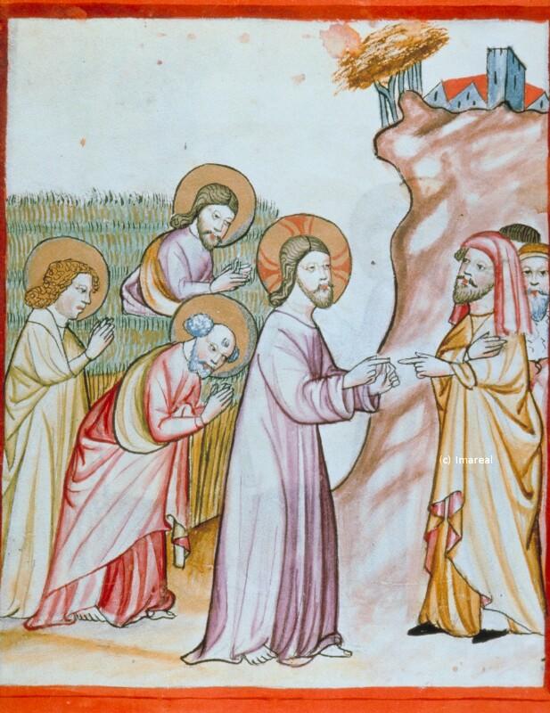 Abreißen der Ähren am Sabbat