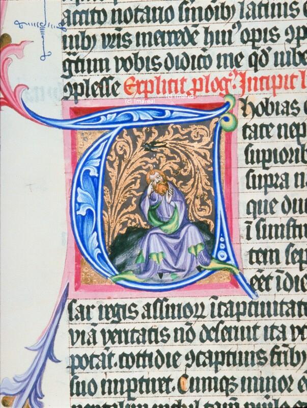 Erblindung des Tobit von Meister des Hasenburg-Missales