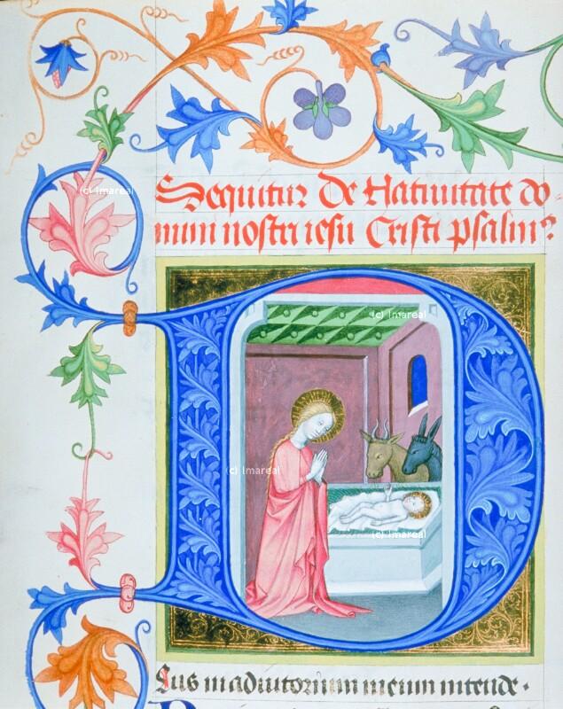 Geburt Christi von Albrechtsminiator