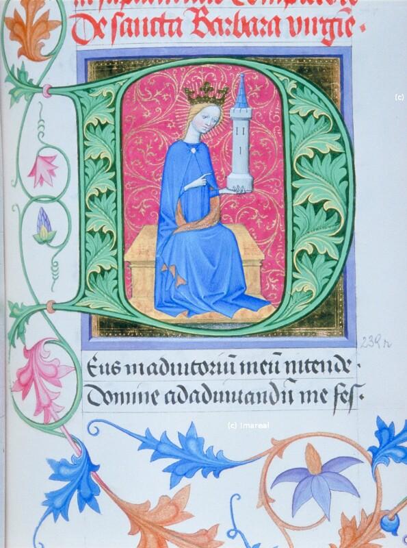Hl. Barbara von Albrechtsminiator