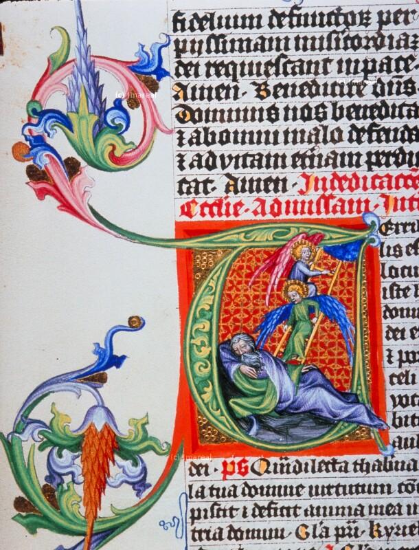 Jakobs Traum von der Himmelsleiter von Meister des Hasenburg-Missales