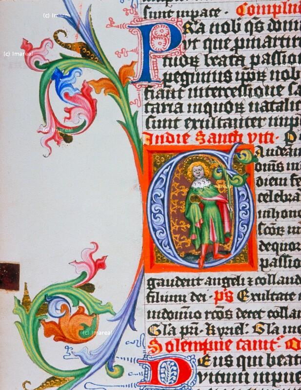 Hl. Vitus von Meister des Hasenburg-Missales