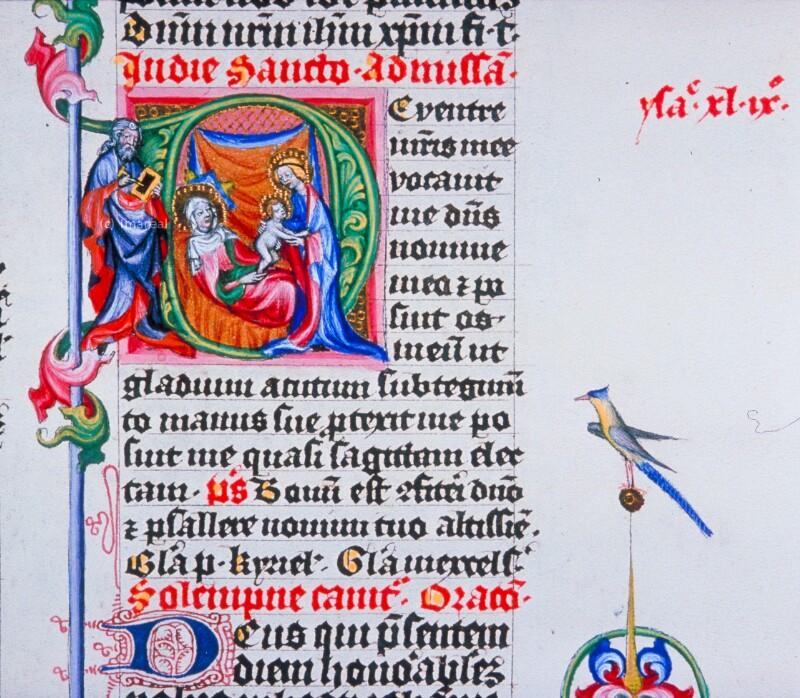 Geburt des Hl. Johannes des Täufers von Meister des Hasenburg-Missales