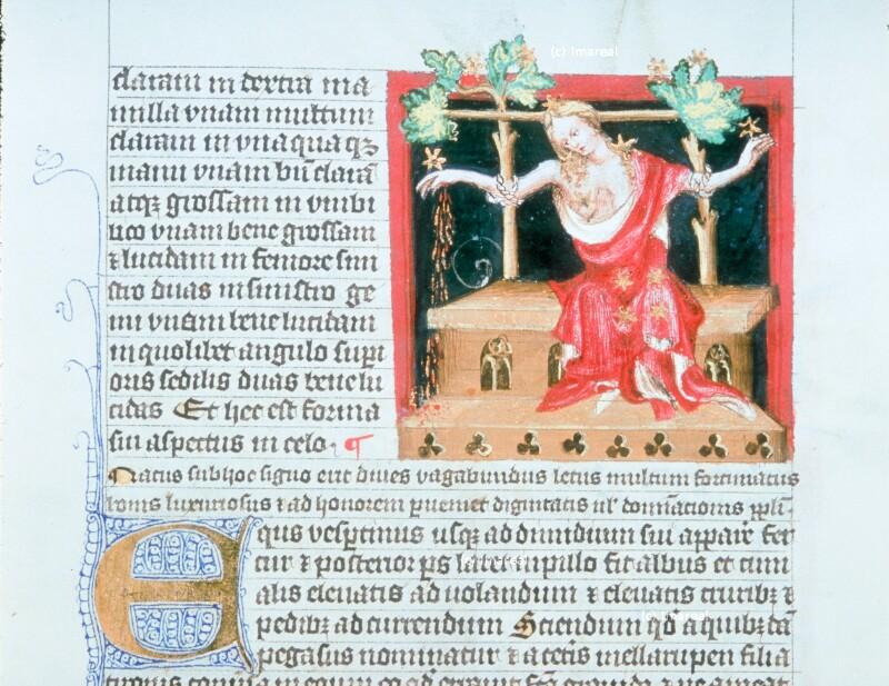 Sternbild Cassiopeia von Wenzelswerkstatt