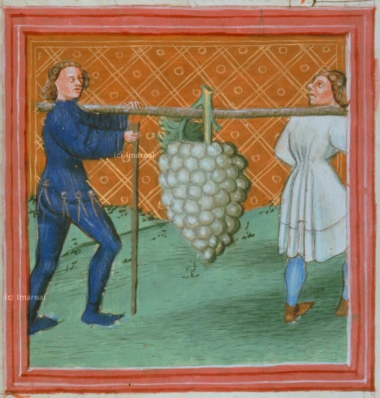 Heimkehr der Kundschafter mit der Weintraube