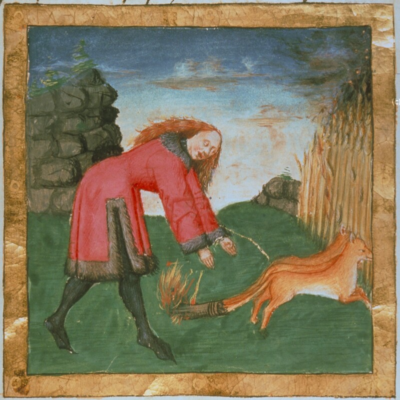 Simson treibt die Füchse in die Felder der Philister