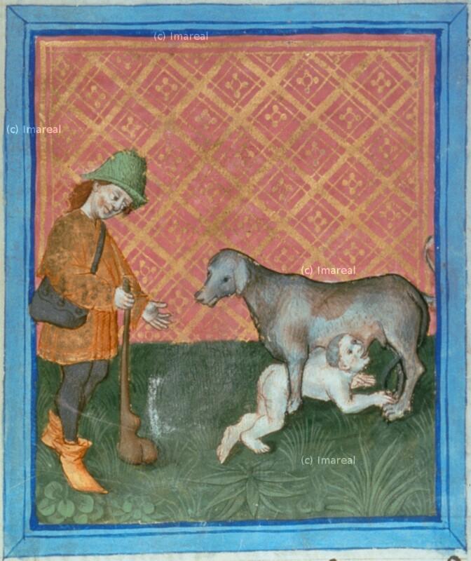 Kyrus wird von einem Hund gesäugt