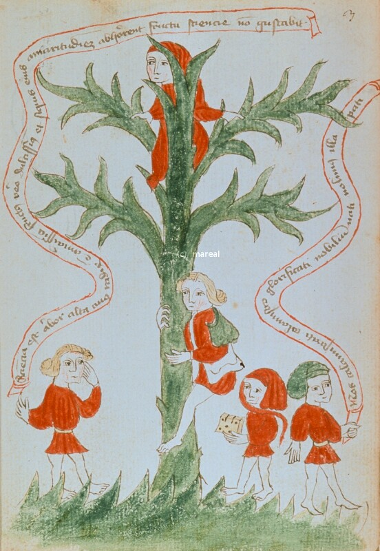 Baum der Gelehrsamkeit