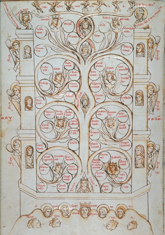 Baum der Tugend