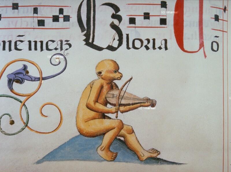 Affe von Jakob von Olmütz
