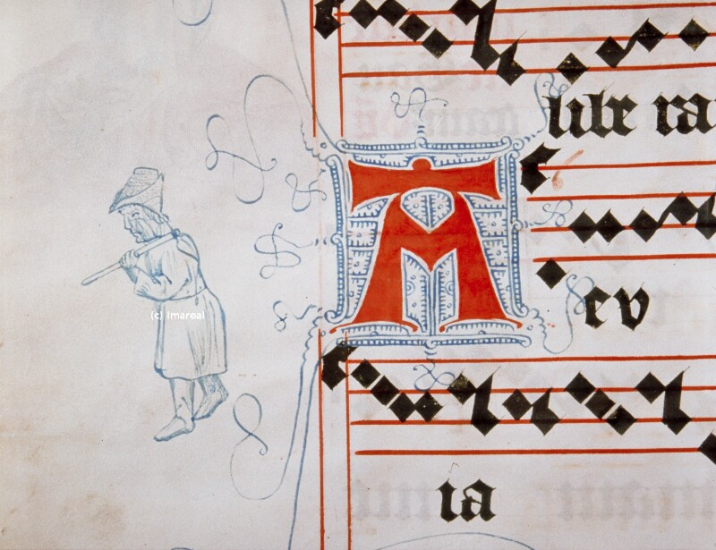 Mann mit Harke von Meister Matthäus