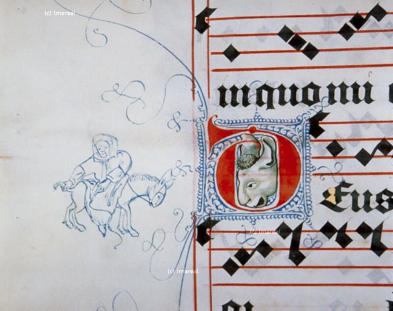 Eselreiter von Meister Matthäus