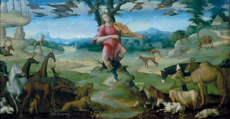 Orpheus musizierend von Peruzzi Baldassare