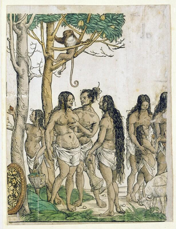 Afrikaner von Burgkmair Hans der Ältere