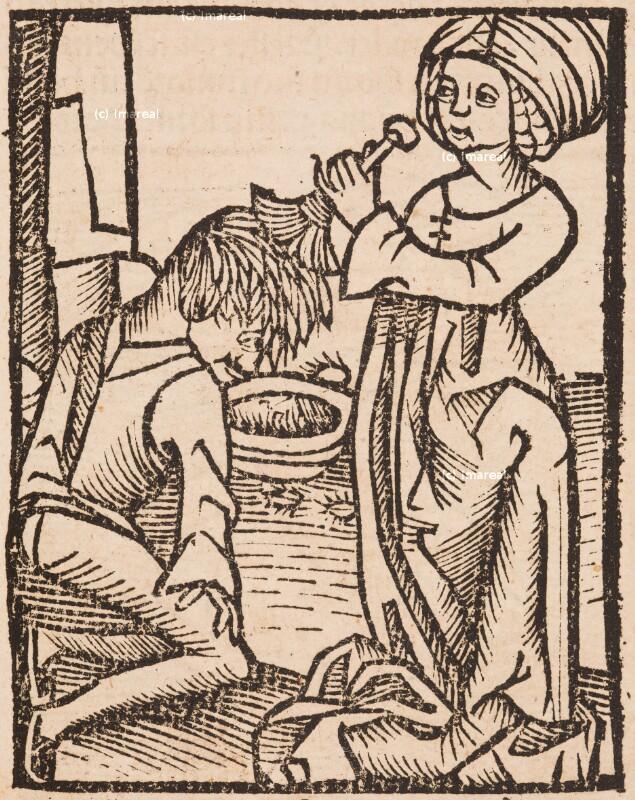 Hortus Sanitatis von Prüss Johannes der Ältere